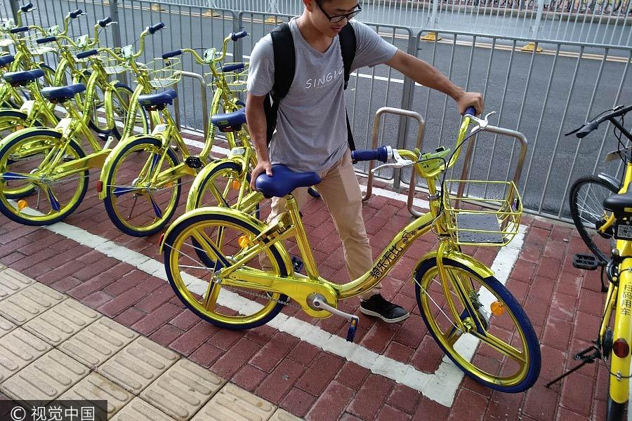 bicicletas compartidas doradas coolqi