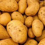 China cultivará patatas en la Luna