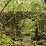 Turismo chino en Galicia, la apuesta por el turismo de naturaleza